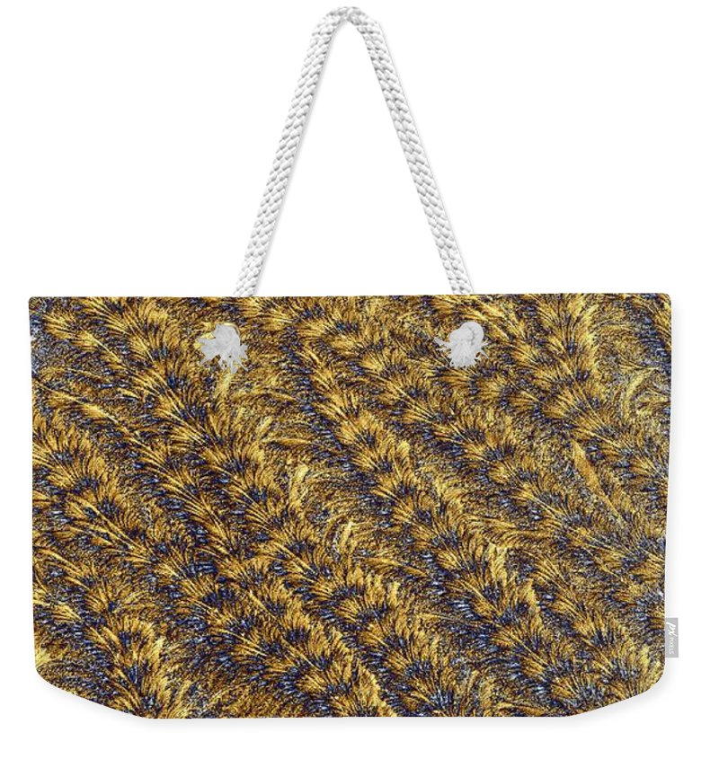 Abstract Weekender Tote Bag featuring the photograph Golden Grains - Hoarfrost On A Solar Panel by Kim Bemis