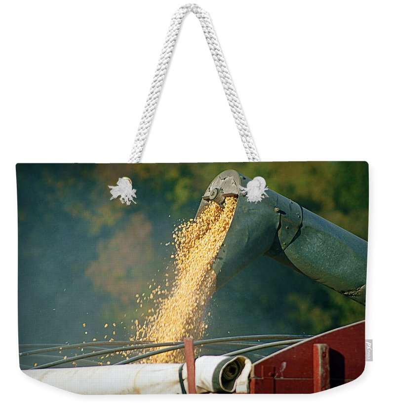 Corn Weekender Tote Bag featuring the photograph Golden Harvest by Cricket Hackmann