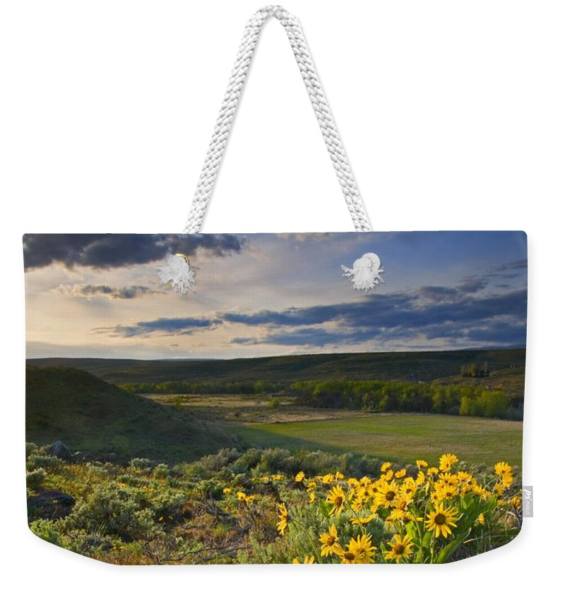 Balsamroot Weekender Tote Bag featuring the photograph Golden Hills by Mike Dawson