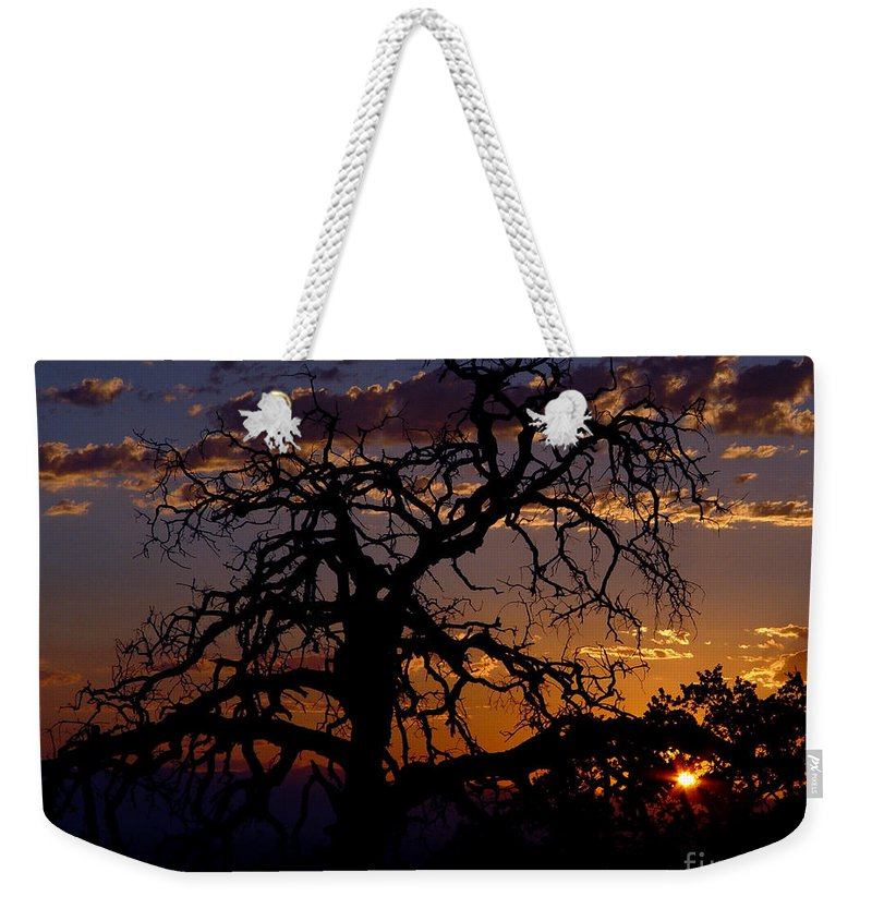 Sunset Weekender Tote Bag featuring the photograph Golden Hour by Peter Piatt