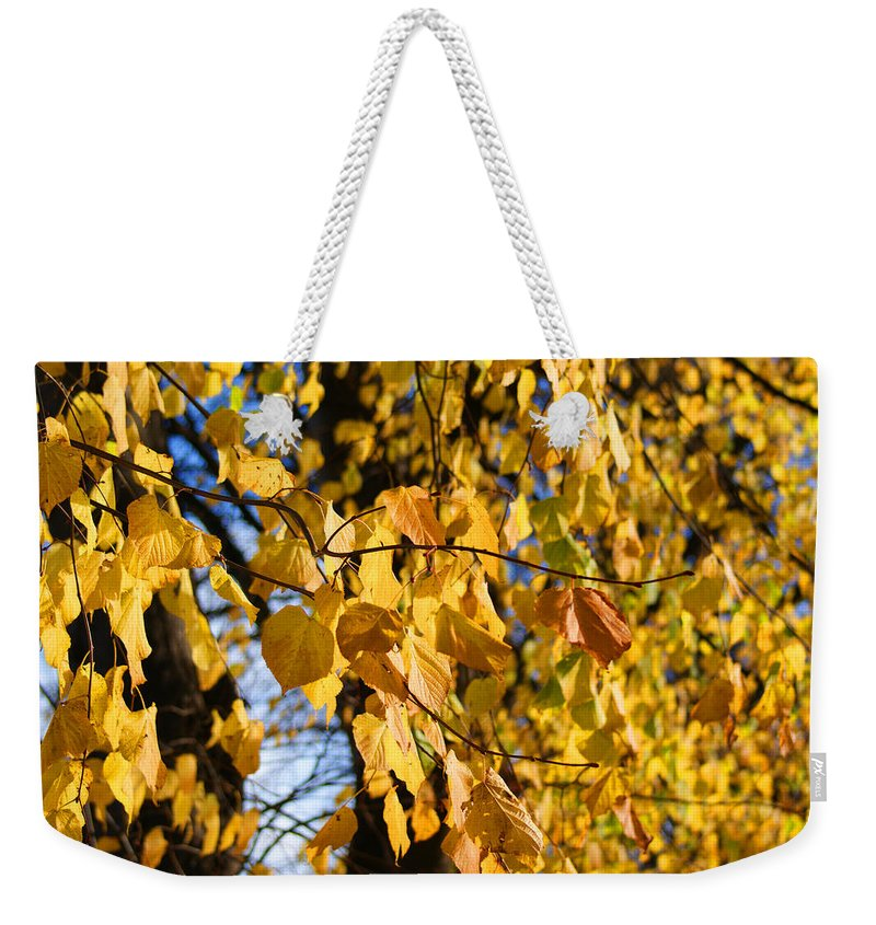 Autumn Weekender Tote Bag featuring the photograph Golden Leaves by Carol Lynch