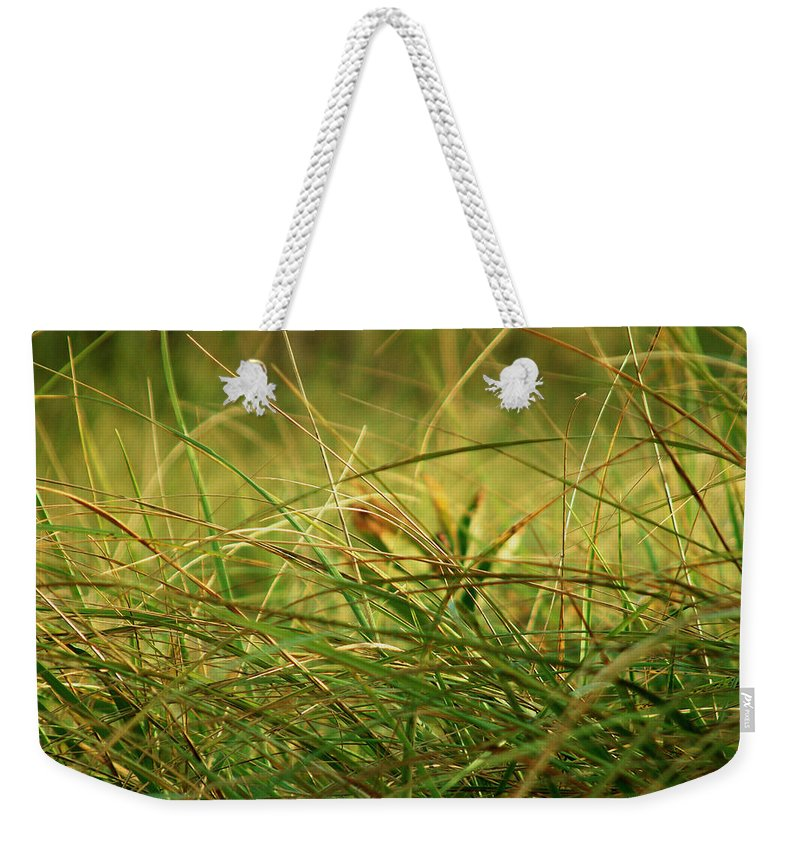 Autumn Weekender Tote Bag featuring the photograph Golden Meadow September by RC DeWinter