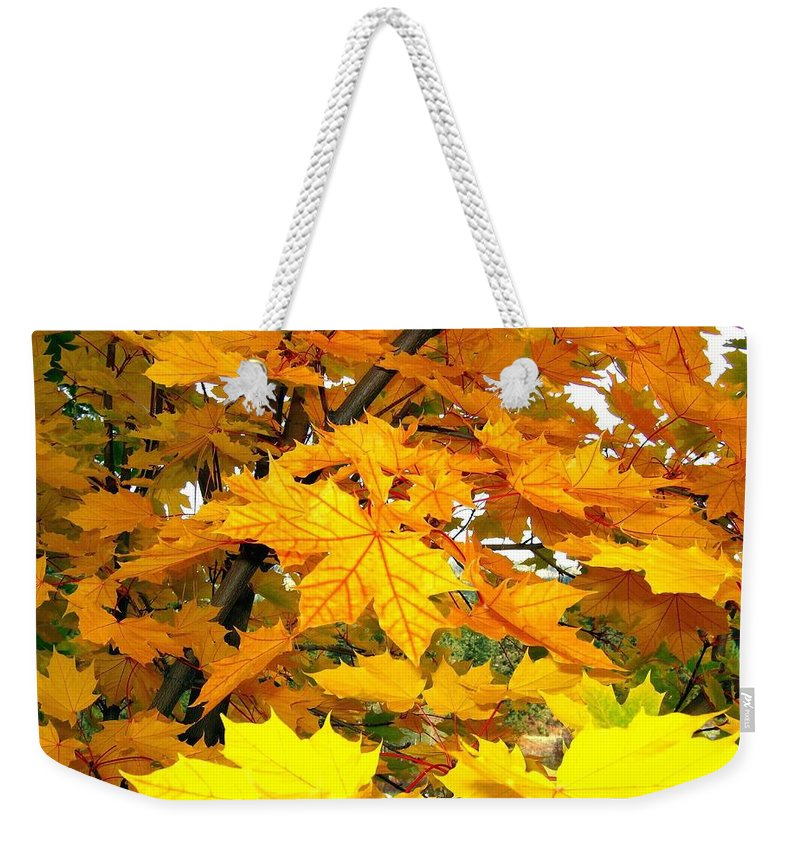 Autumn Weekender Tote Bag featuring the photograph Golden Moments by Will Borden
