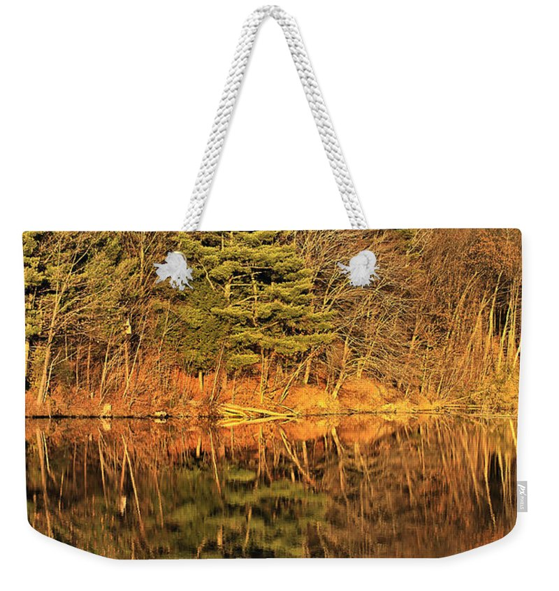 Light Weekender Tote Bag featuring the photograph Golden Natural Light by Deborah Benoit