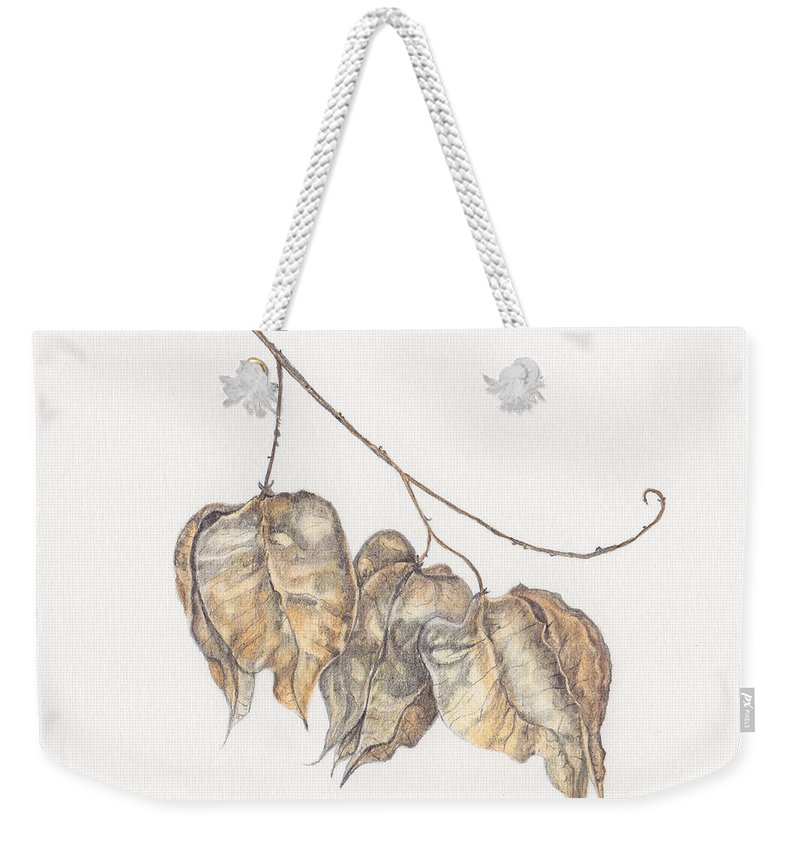 Golden Rain Tree Weekender Tote Bag featuring the painting Golden Rain Tree Pods by Diane Inman
