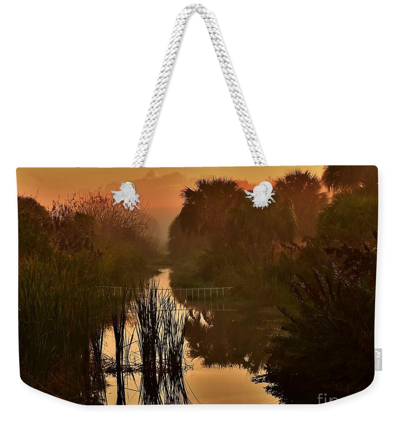 Landscape Weekender Tote Bag featuring the photograph Golden Refelctions by Lisa Renee Ludlum