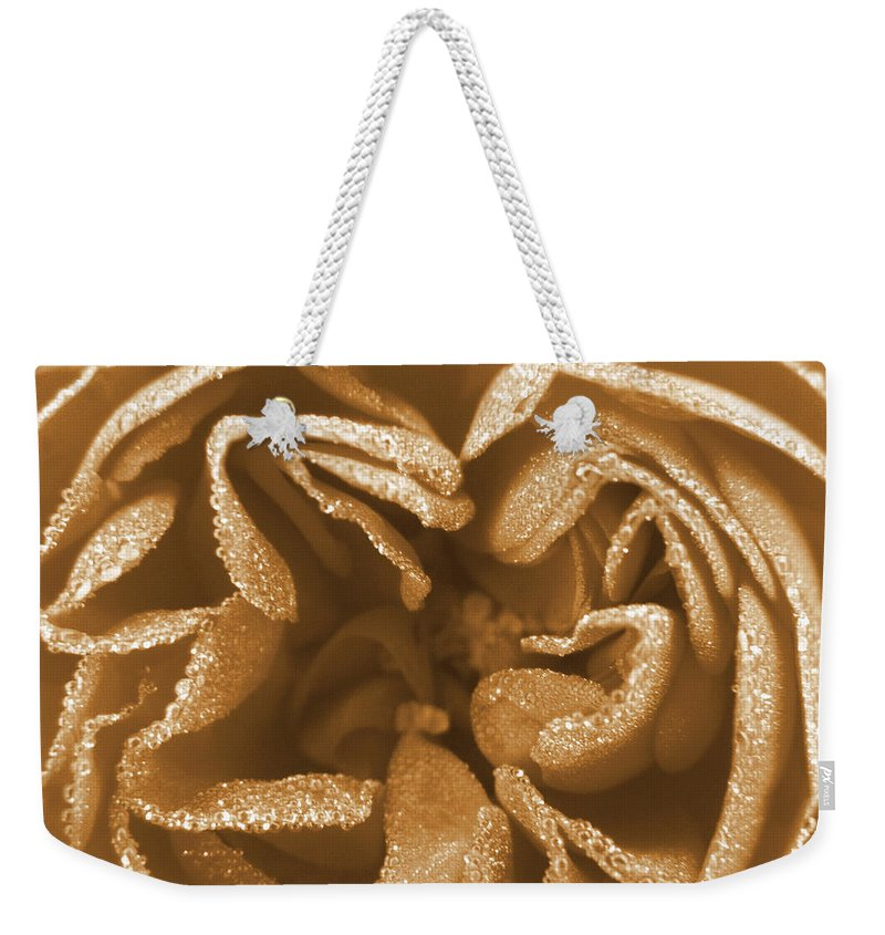 Rose Weekender Tote Bag featuring the photograph Golden Rose by Amy Fose