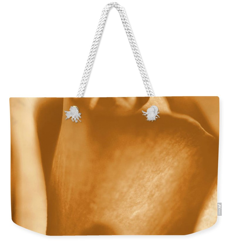 Rose Weekender Tote Bag featuring the photograph Golden Rose Bud by Amy Fose