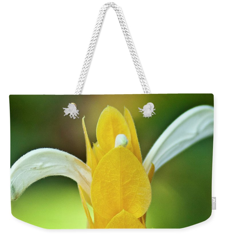 Flora Weekender Tote Bag featuring the photograph Golden Shrimp Plant by Heiko Koehrer-Wagner