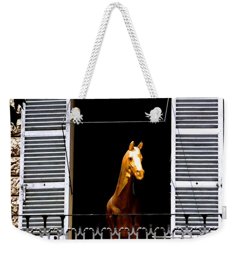 Horse Weekender Tote Bag featuring the photograph Golden Stallian by Charles Stuart