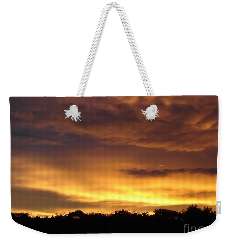 Sunset Weekender Tote Bag featuring the photograph Golden Sunset 1 by Carol Lynch