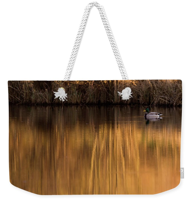 Gold Weekender Tote Bag featuring the photograph Golden Sunset by Angel Ciesniarska