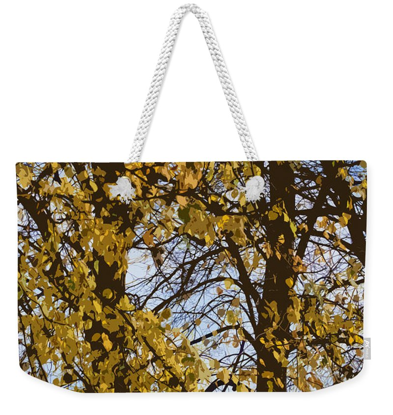 Autumn Weekender Tote Bag featuring the photograph Golden Tree 2 by Carol Lynch