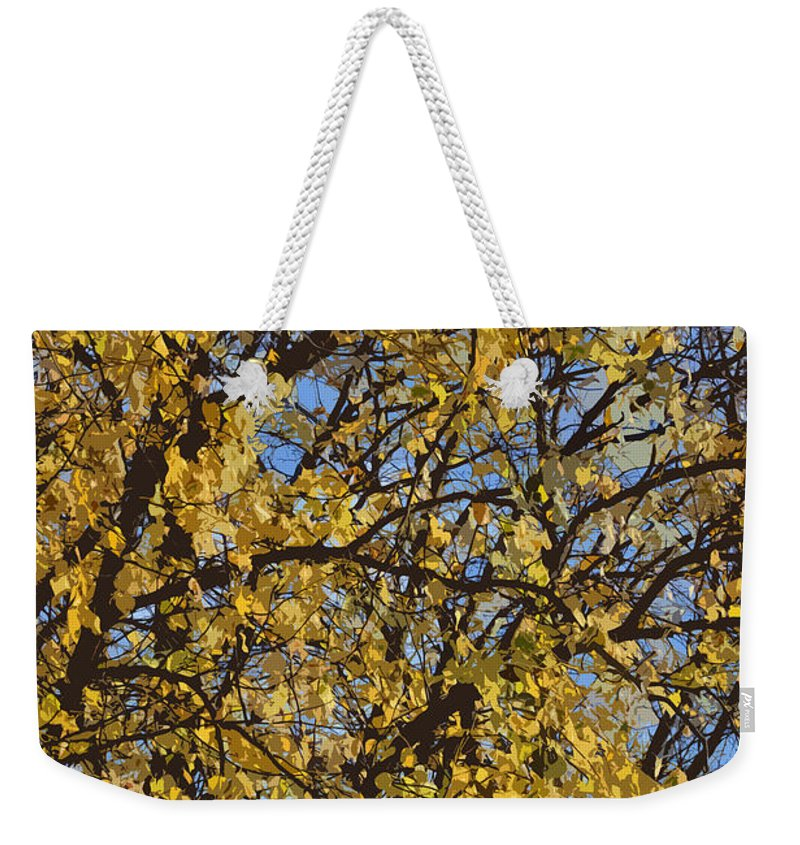 Autumn Weekender Tote Bag featuring the photograph Golden Tree 3 by Carol Lynch
