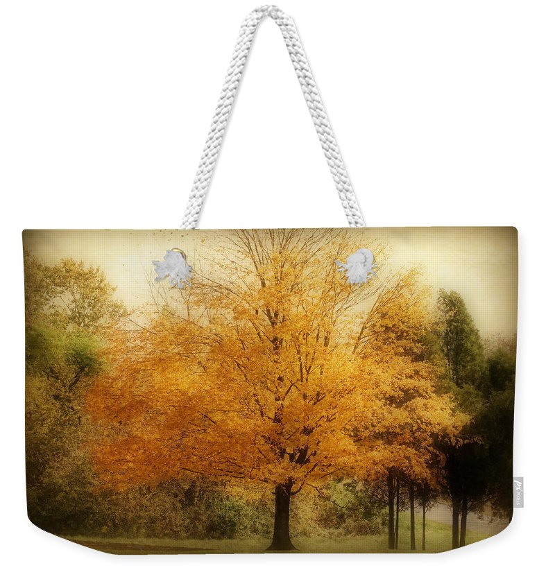 Landscape Weekender Tote Bag featuring the photograph Golden Tree by Sandy Keeton