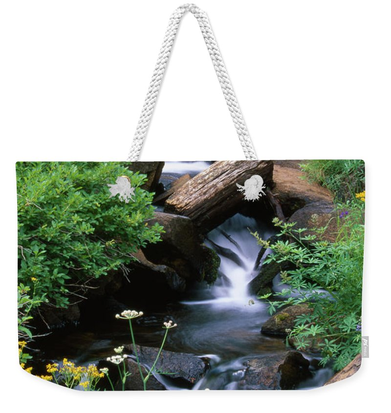 Brook Weekender Tote Bag featuring the photograph Golden Trout Wilderness by Soli Deo Gloria Wilderness And Wildlife Photography