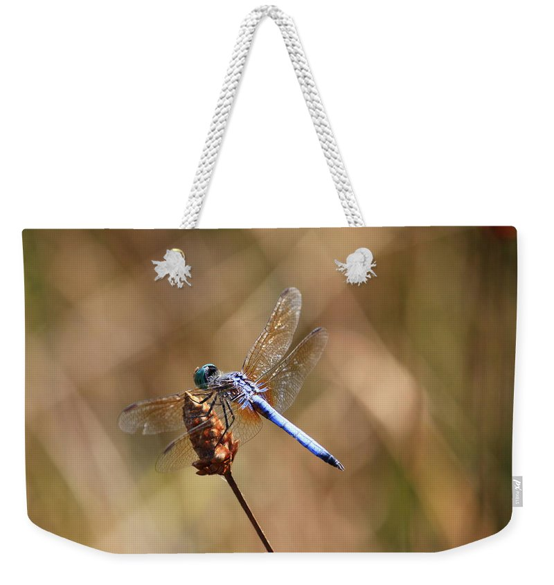 Dragonflies Weekender Tote Bag featuring the photograph Golden Wings by Carol Groenen