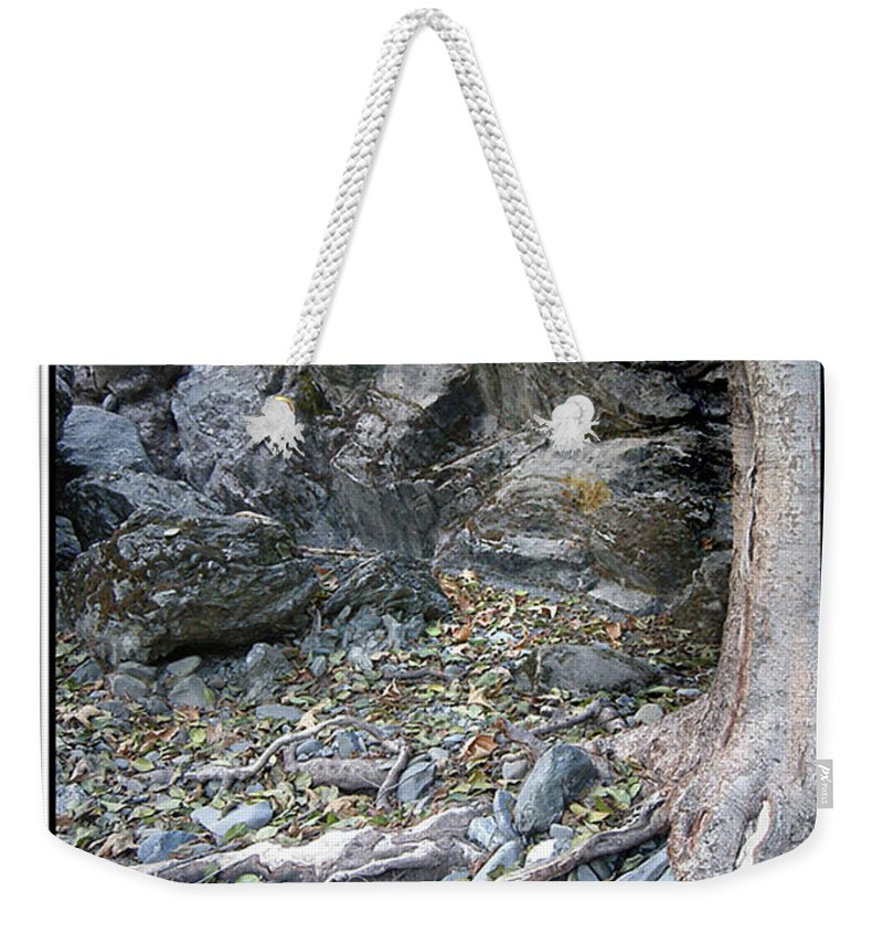 Trees Weekender Tote Bag featuring the photograph Gollum's Cave by Karen W Meyer
