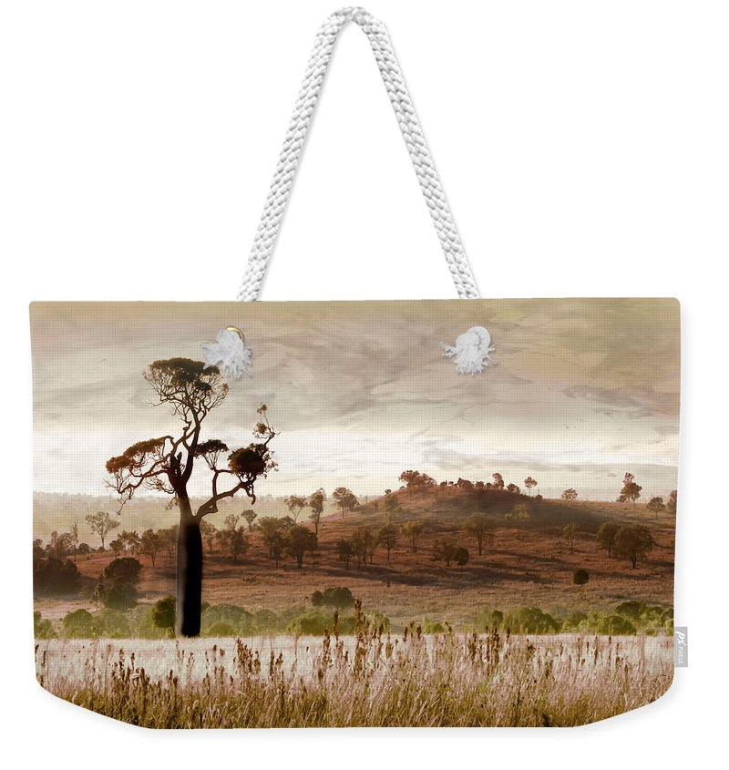 Landscapes Weekender Tote Bag featuring the photograph Gondwana Boab by Holly Kempe