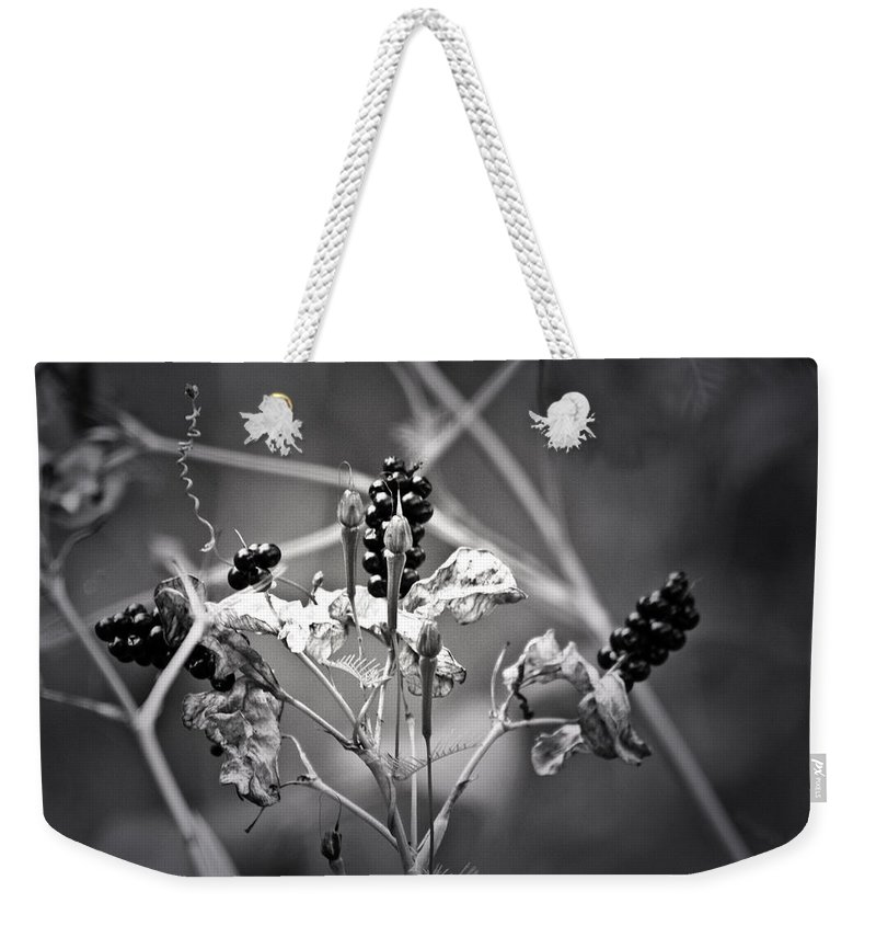 Flower Weekender Tote Bag featuring the photograph Gone To Seed Berries And Vines by Teresa Mucha