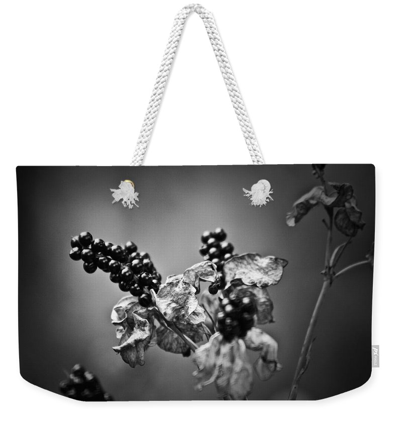 Flower Weekender Tote Bag featuring the photograph Gone To Seed Blackberry Lily by Teresa Mucha