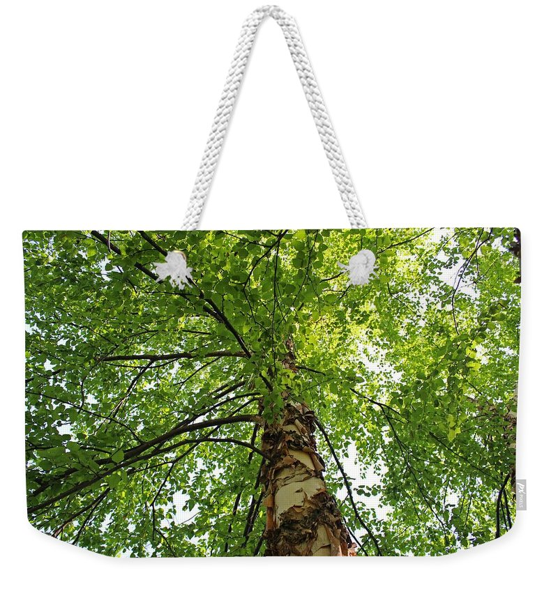 Tree Weekender Tote Bag featuring the photograph Good For The Soul by Michiale Schneider