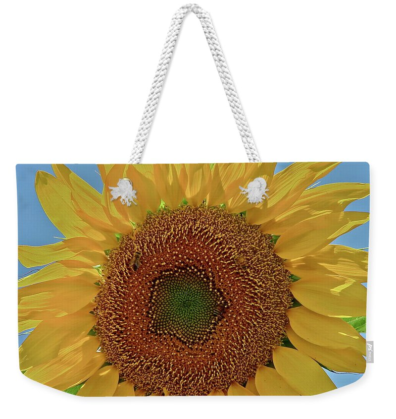 Flower Weekender Tote Bag featuring the photograph Good Morning by Diana Hatcher