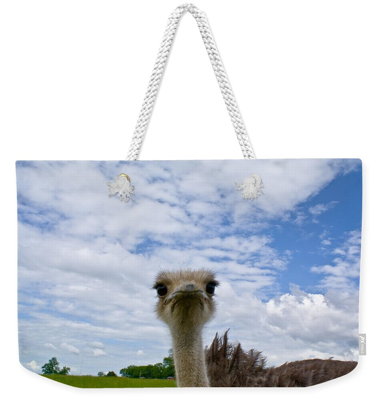 Cumberand Weekender Tote Bag featuring the photograph Good Morning From Tennessee by Douglas Barnett