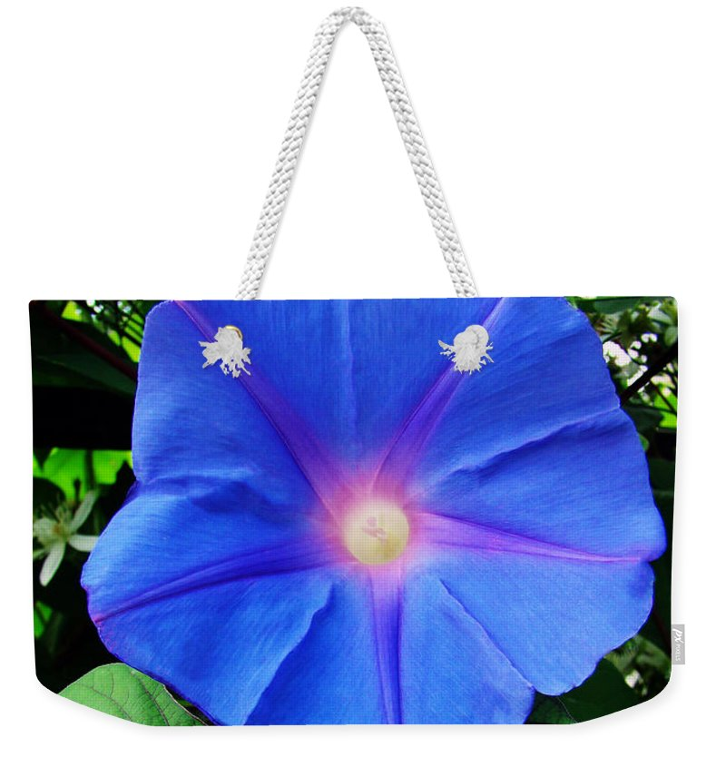 Morning Glory Weekender Tote Bag featuring the photograph Good Morning by Sue Melvin