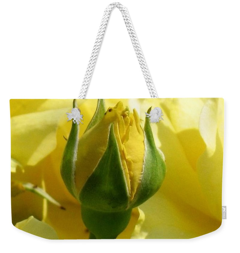 Floral Weekender Tote Bag featuring the photograph Good Morning Sunshine by Marla McFall