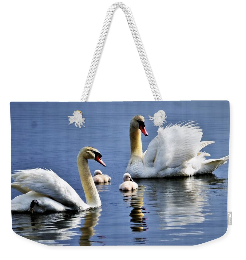 Swans Weekender Tote Bag featuring the photograph Good Parents by CK Brown