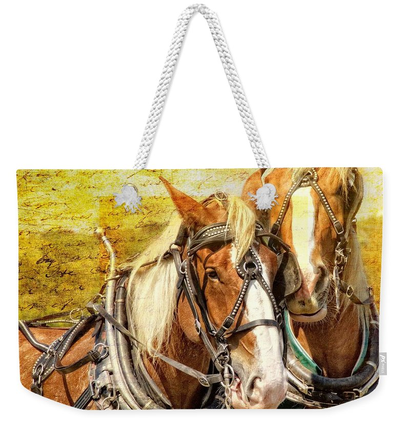 Alicegipsonphotographs Weekender Tote Bag featuring the photograph Good Plow Buddies by Alice Gipson