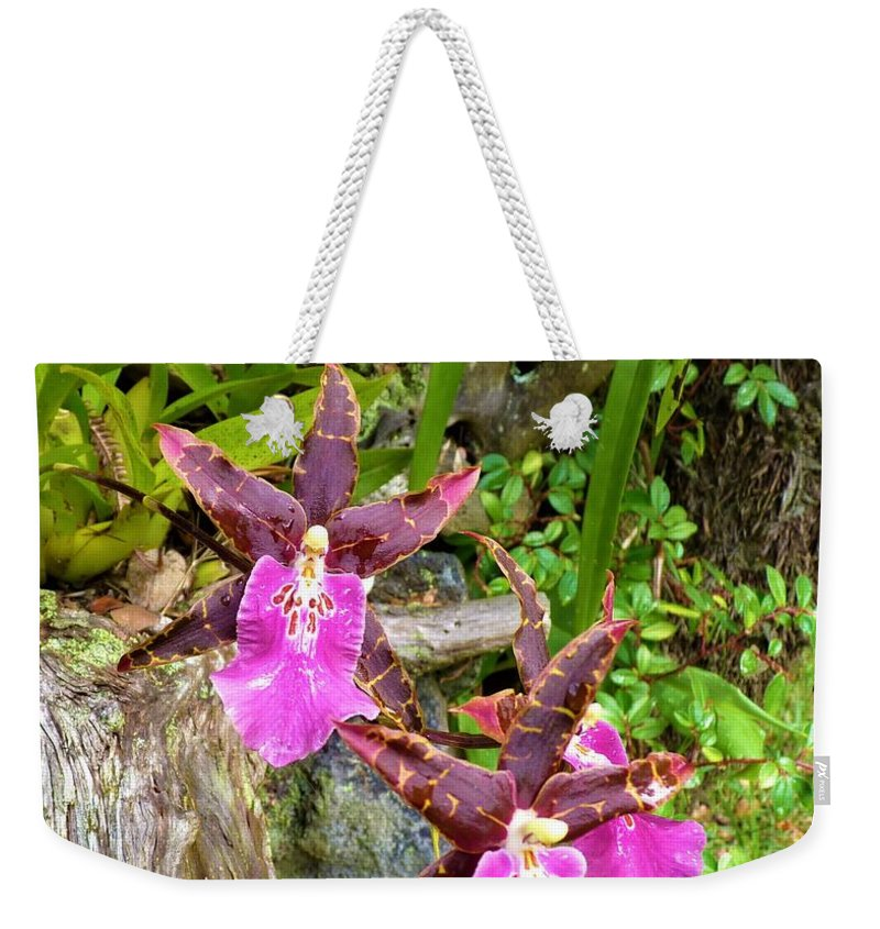 Orchids Hawaiian Rain Forest Weekender Tote Bag featuring the photograph Good Vibrations by Cat Pancake