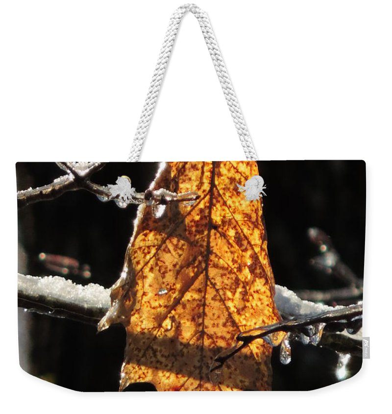 Vertical Weekender Tote Bag featuring the photograph Goodbye To Autumn by Bill Tomsa