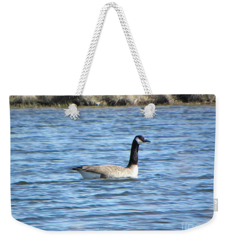 Goose Weekender Tote Bag featuring the photograph Goose by C Zajicek
