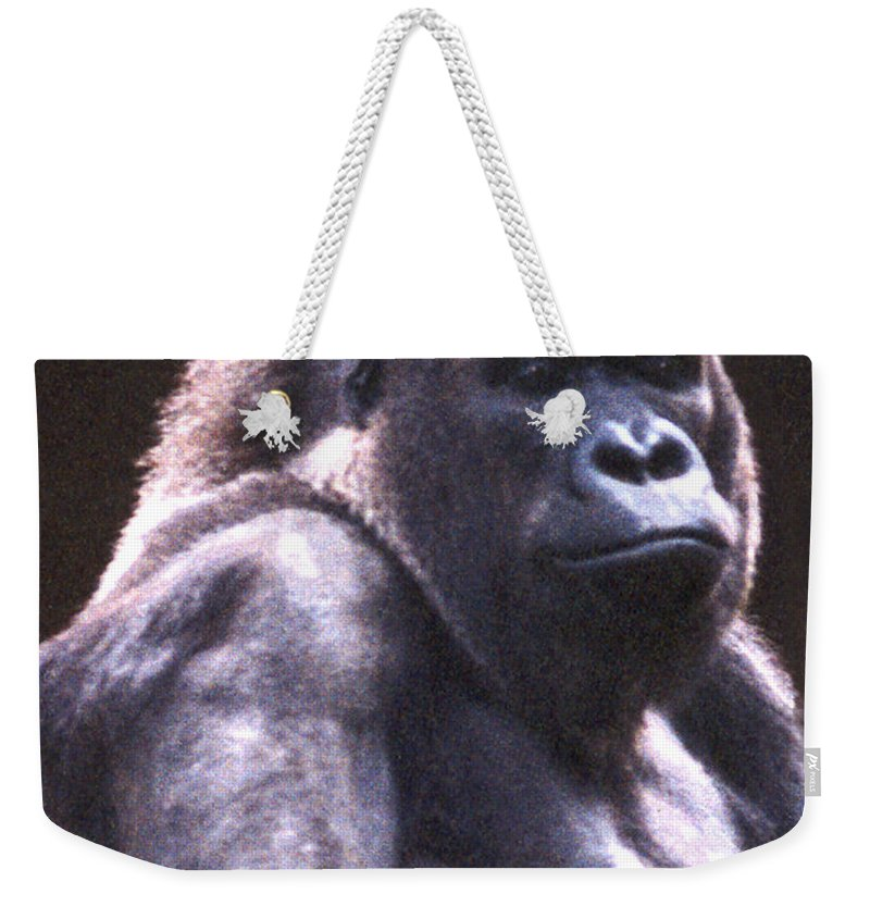 Gorilla Weekender Tote Bag featuring the photograph Gorilla by Steve Karol