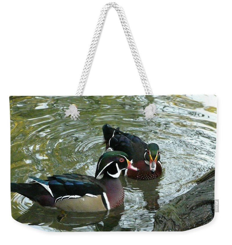 Bird Weekender Tote Bag featuring the photograph Gossip by Valerie Ornstein