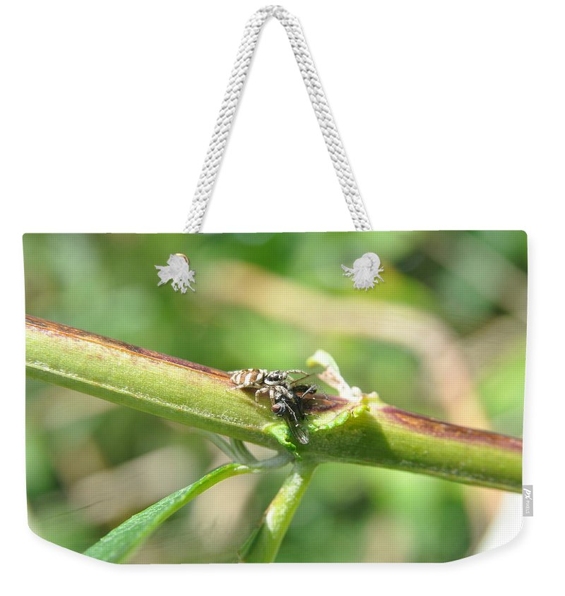 Jumping Spider Weekender Tote Bag featuring the photograph Got You by Eduard Meinema