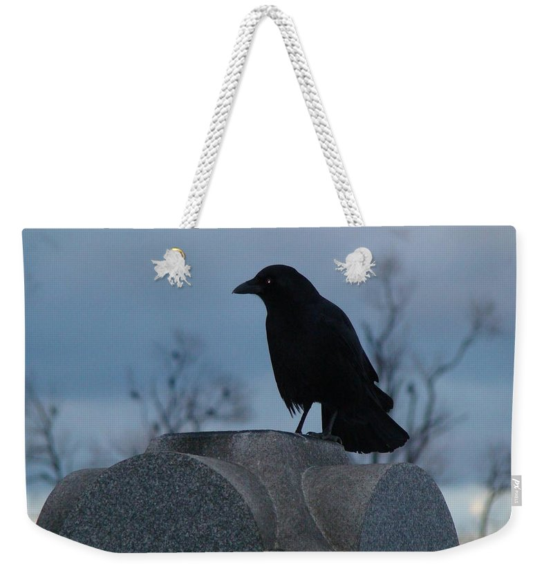 Crow Weekender Tote Bag featuring the photograph Gothic Blue Sky And Crow by Gothicrow Images