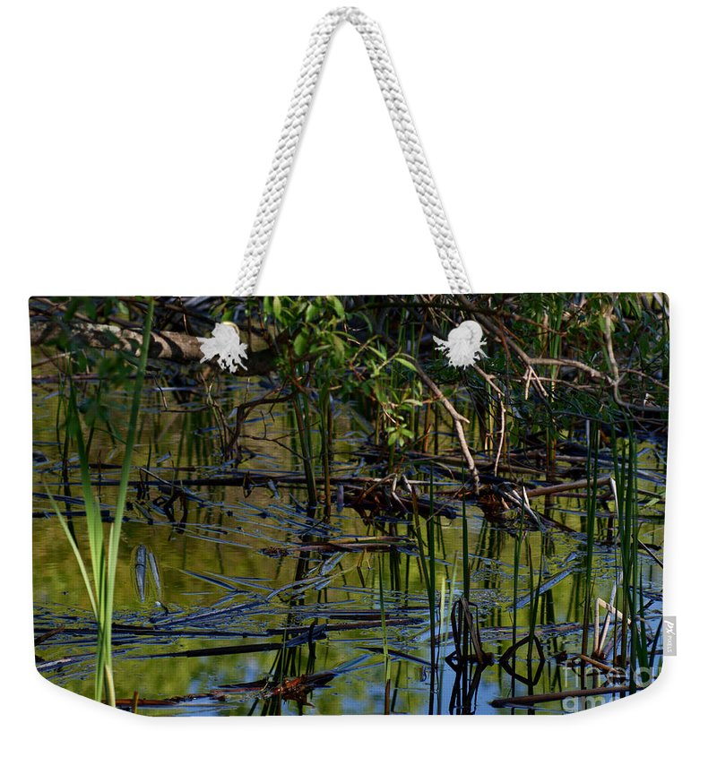 Grand Beach Marsh Manitoba Canada Weekender Tote Bag featuring the photograph Grand Beach Marsh by Joanne Smoley