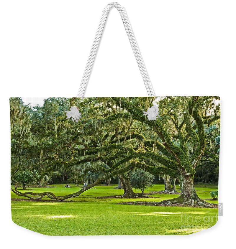 Avery Island Weekender Tote Bag featuring the photograph Grand Lady by Scott Pellegrin