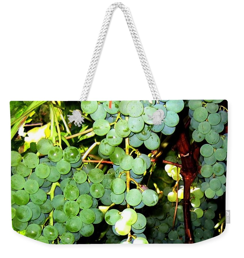 Grapes Weekender Tote Bag featuring the photograph Grape Harvest by Will Borden