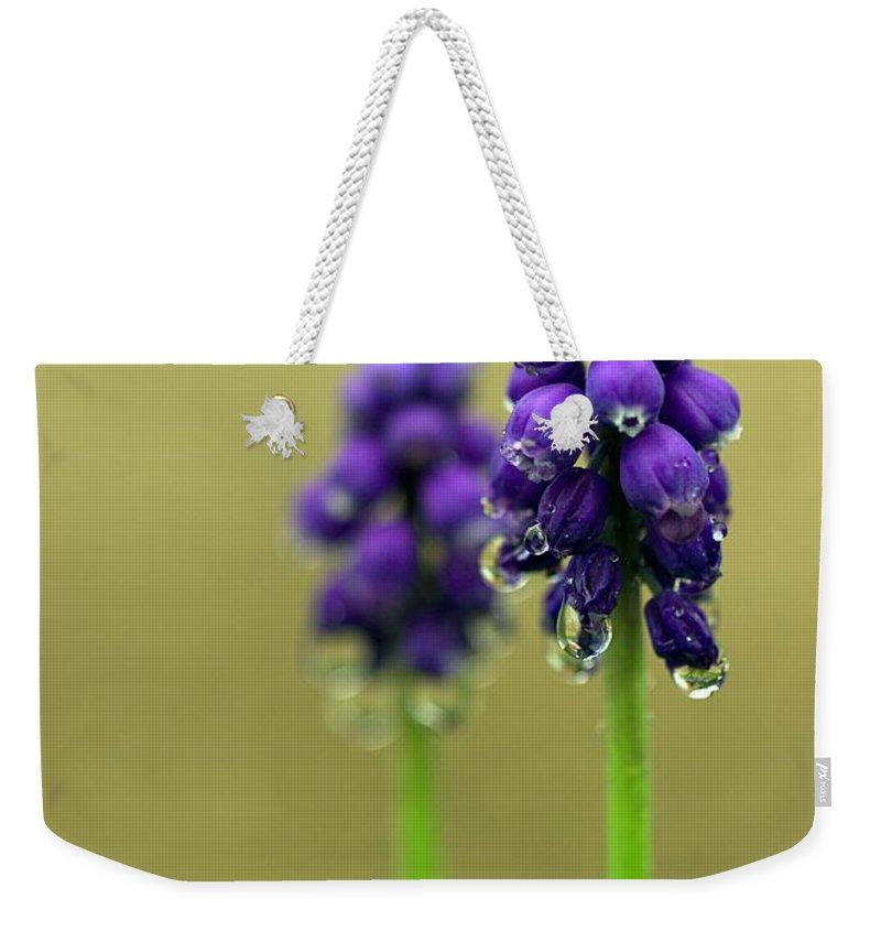 Joseph Skompski Weekender Tote Bag featuring the photograph Grape Hyacinth by Joseph Skompski