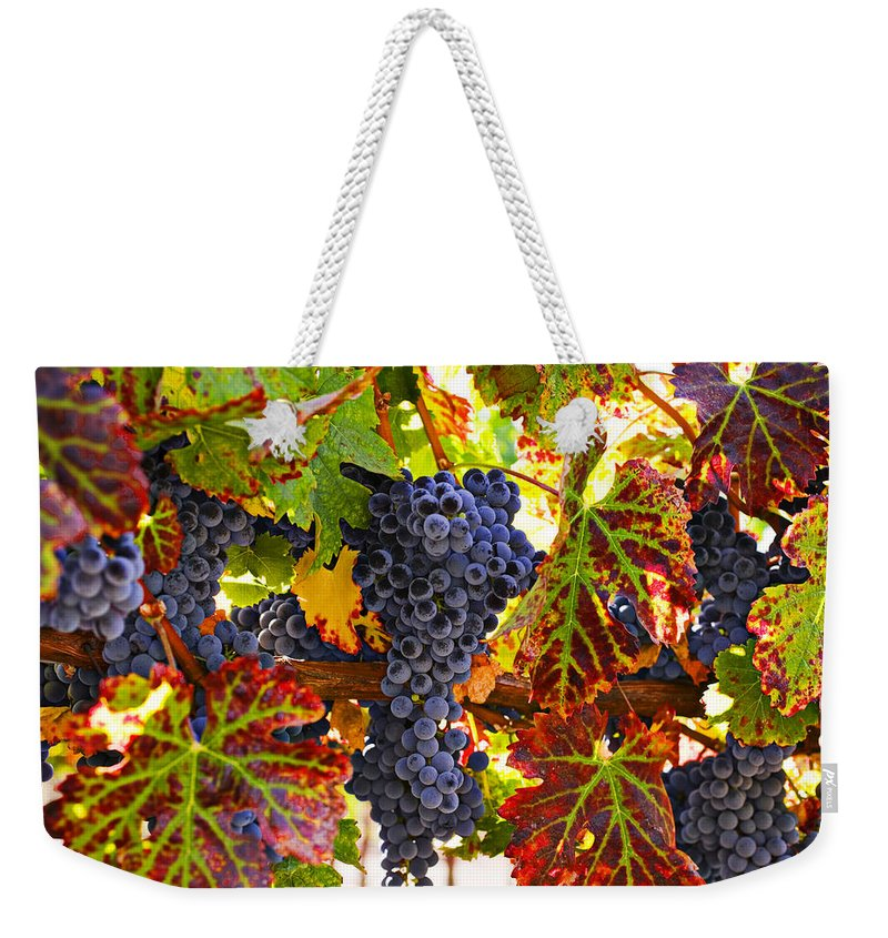 Grapes Weekender Tote Bag featuring the photograph Grapes On Vine In Vineyards by Garry Gay