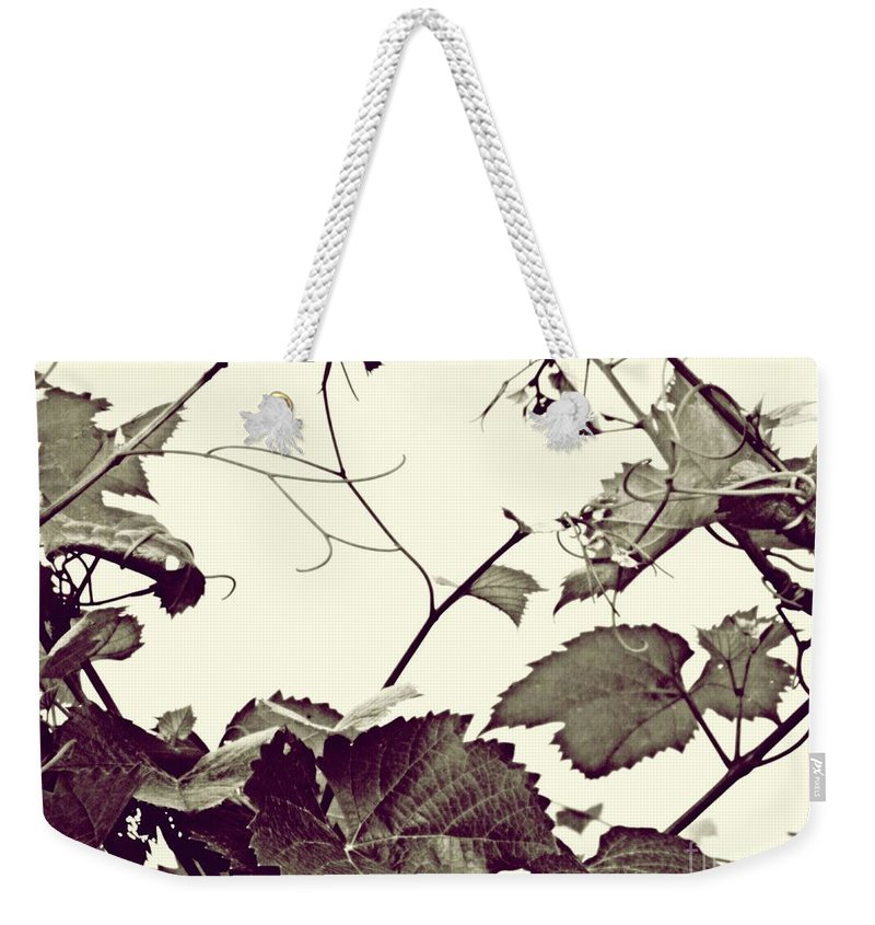 Vineyard Weekender Tote Bag featuring the photograph Grapevine In Sepia 2 by Sarah Loft