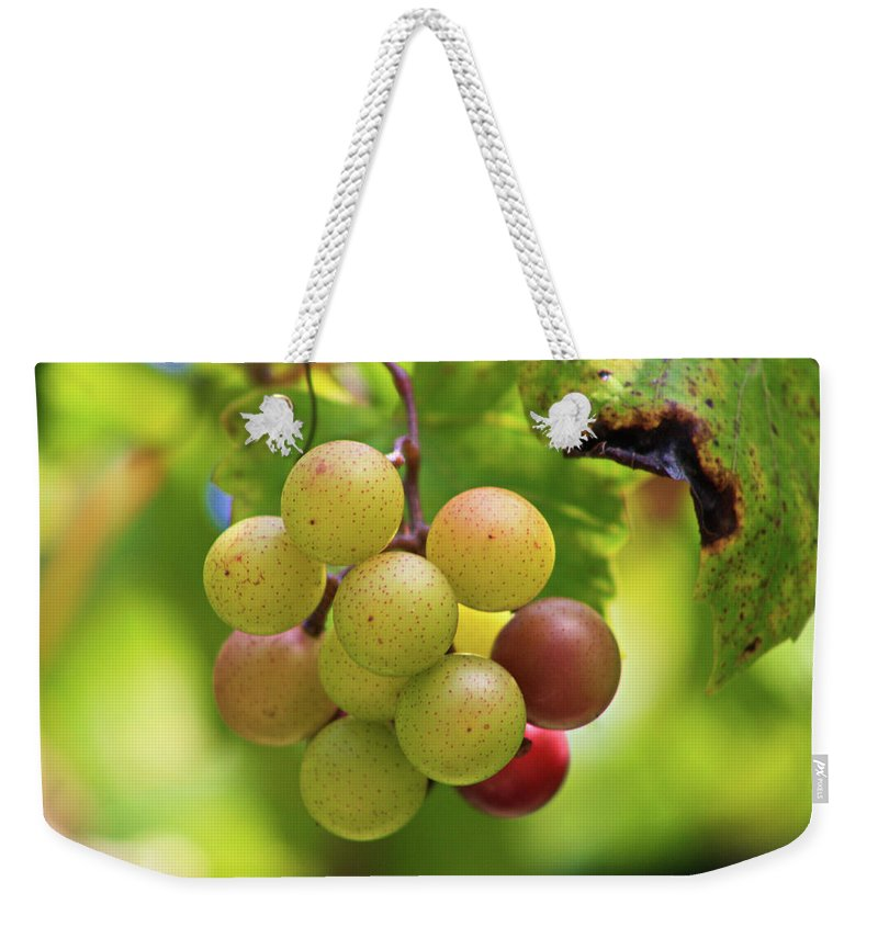 Grapes Weekender Tote Bag featuring the photograph Grapevine by Selena Wagner