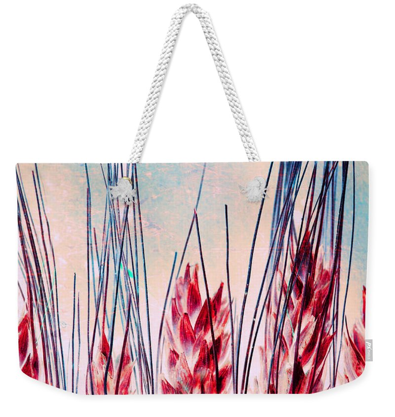 Grass Weekender Tote Bag featuring the photograph Grass Abstract by Tara Turner