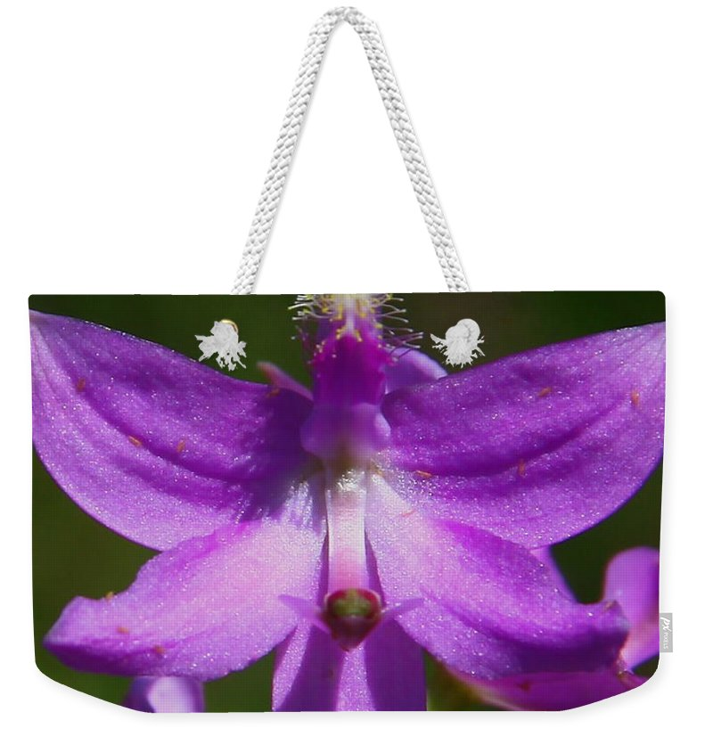 Grass Pink Orchid Weekender Tote Bag featuring the photograph Grass Pink Orchid by Barbara Bowen