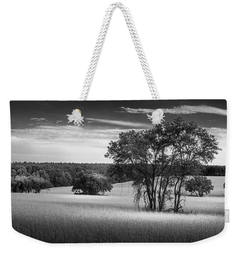 Marvin Spates Weekender Tote Bag featuring the photograph Grass Safari-bw by Marvin Spates