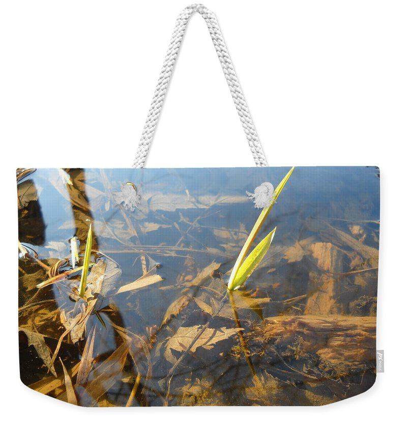 Water Weekender Tote Bag featuring the photograph Grass Spears In Still Water by Kent Lorentzen